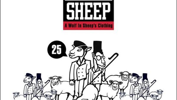 chris-read-black-sheep-awis-340c